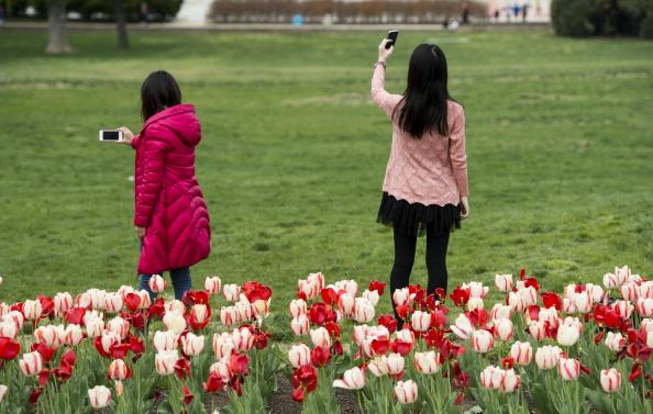 Capitol Selfies