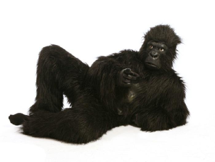 gorilla_suit