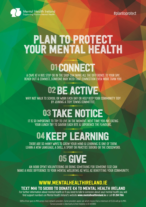 Plan To Protect Poster