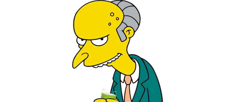 Mr Burns Irish Water