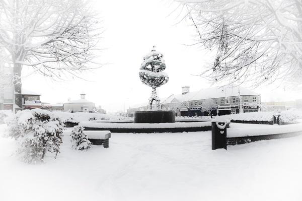 Liberty Tree Carlow town in winter.