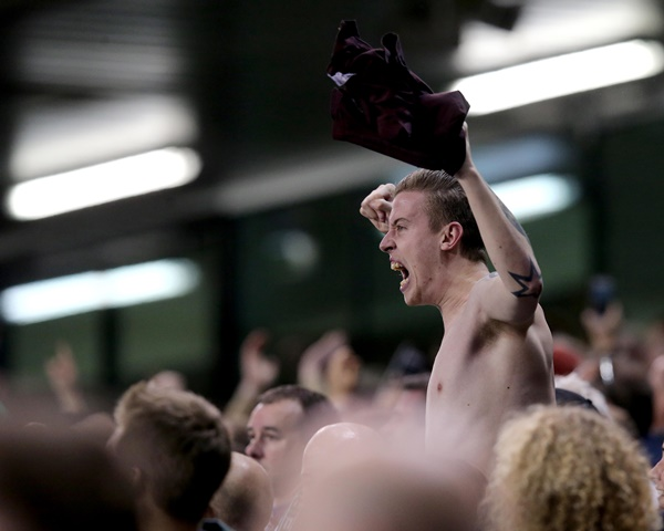 An Ireland fan celebrates Shane Long's goal 8/10/2015