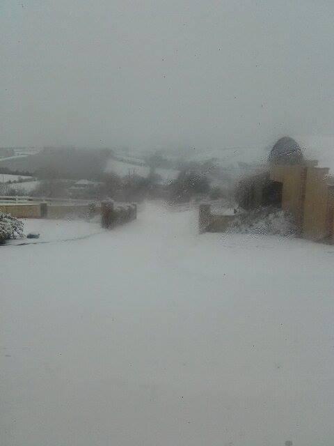 Monaghan snows