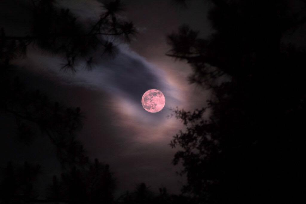 strawberry moon - photo #22