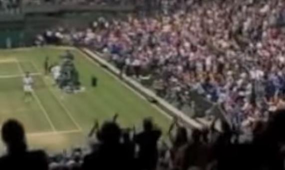 Wimbledon Goran