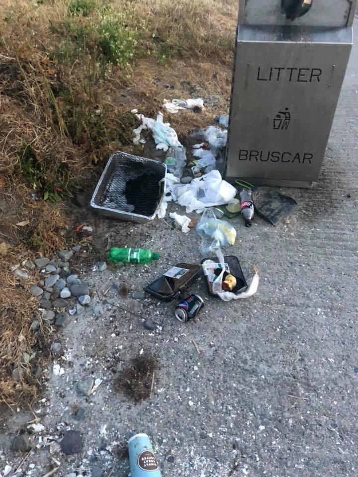 Laytown Strand beach litter